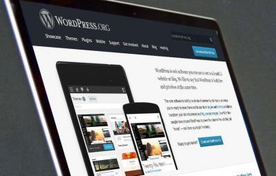 Syracuse Web Design Wordpress developers