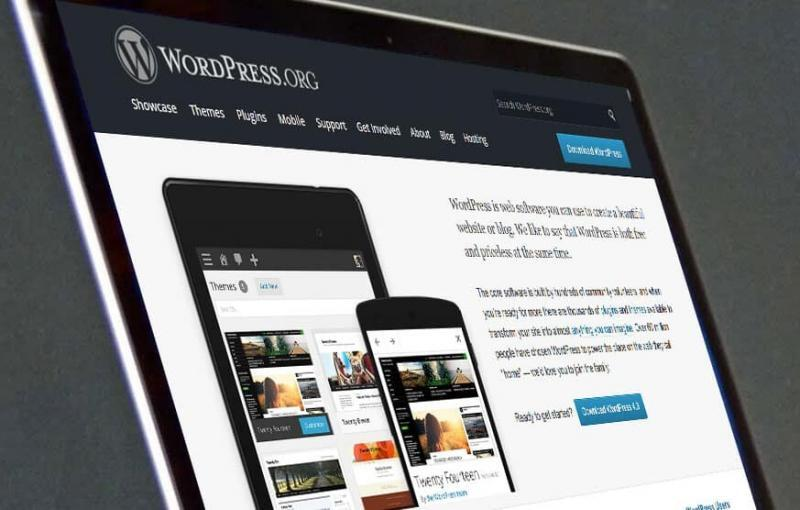 Syracuse Web Design Wordpress developers