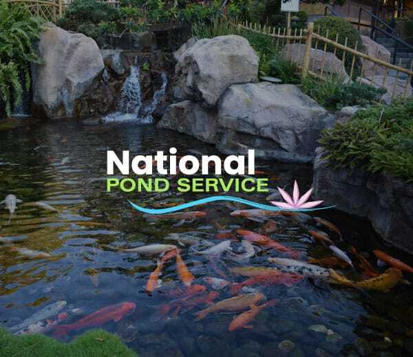 pond landscaping company website design syracuse ny